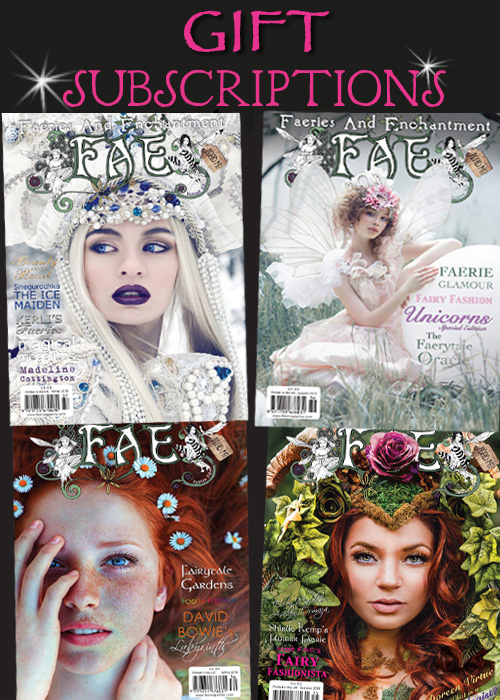subscriptions-fae-13